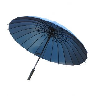 Hercules Umbrella